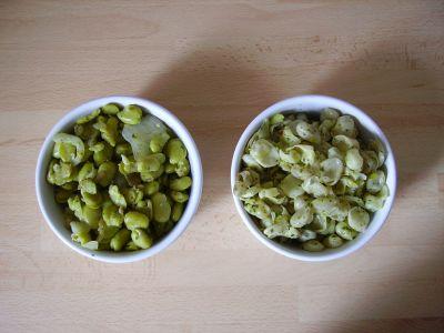 Pâtes aux fèves sans gluten