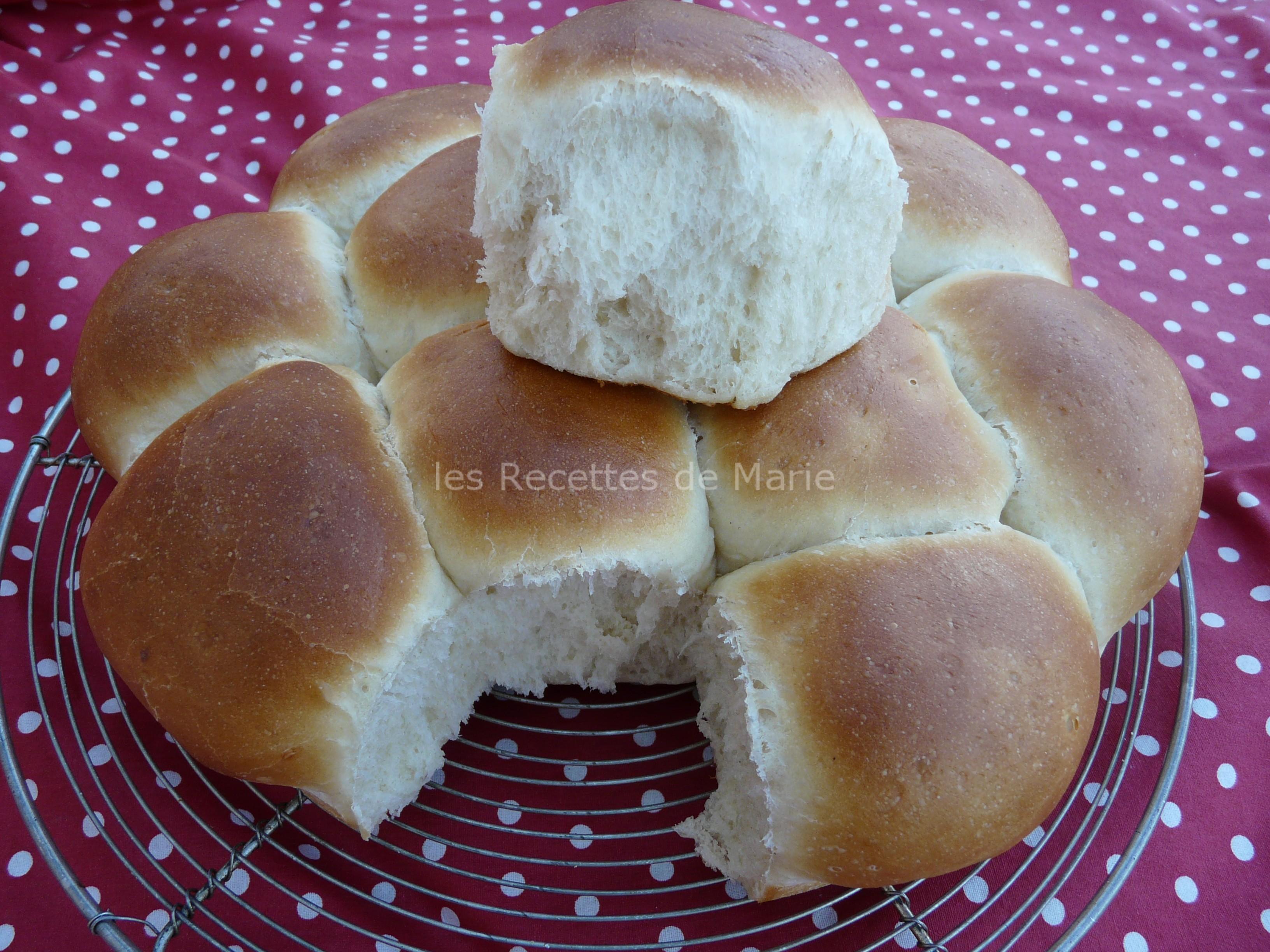 Rollos de pan americanos